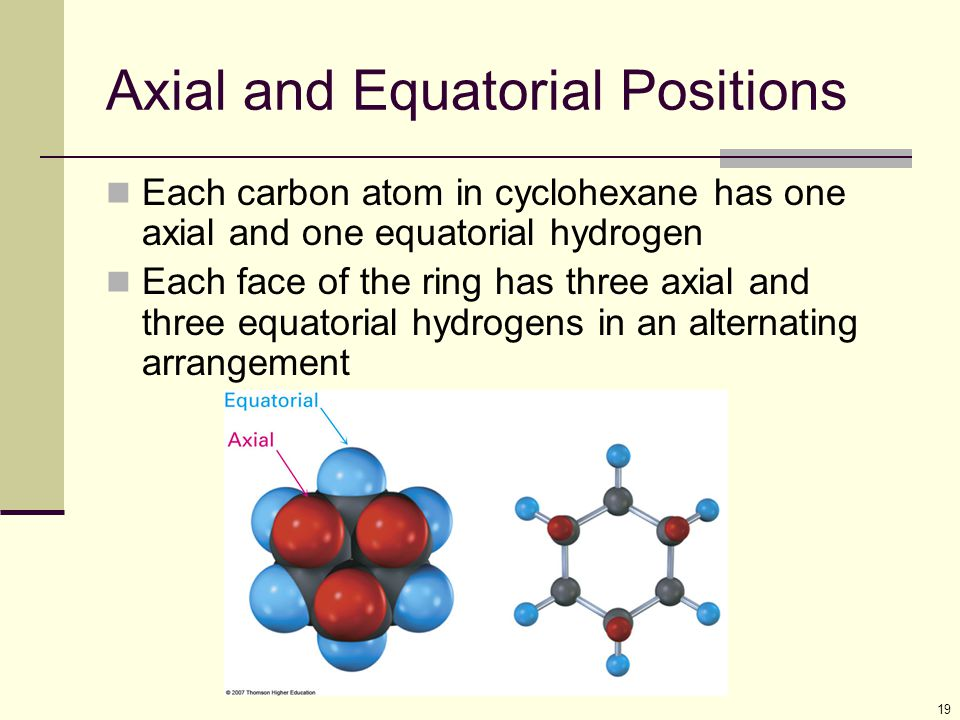 19 Axial and Equatorial Positions Each carbon atom in cyclohexane has one axial and one equatorial hydrogen Each face of the ring has three axial and three equatorial hydrogens in an alternating arrangement