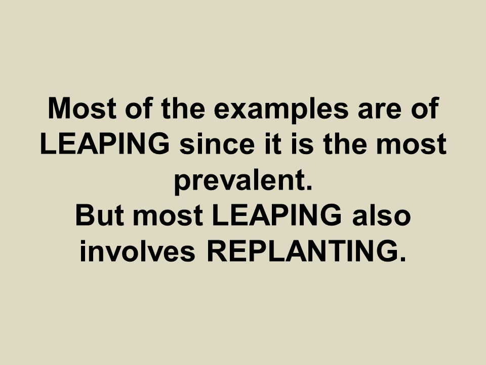 Most of the examples are of LEAPING since it is the most prevalent. But most LEAPING also involves REPLANTING.