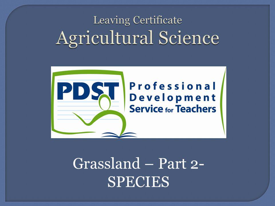 Grassland – Part 2- SPECIES