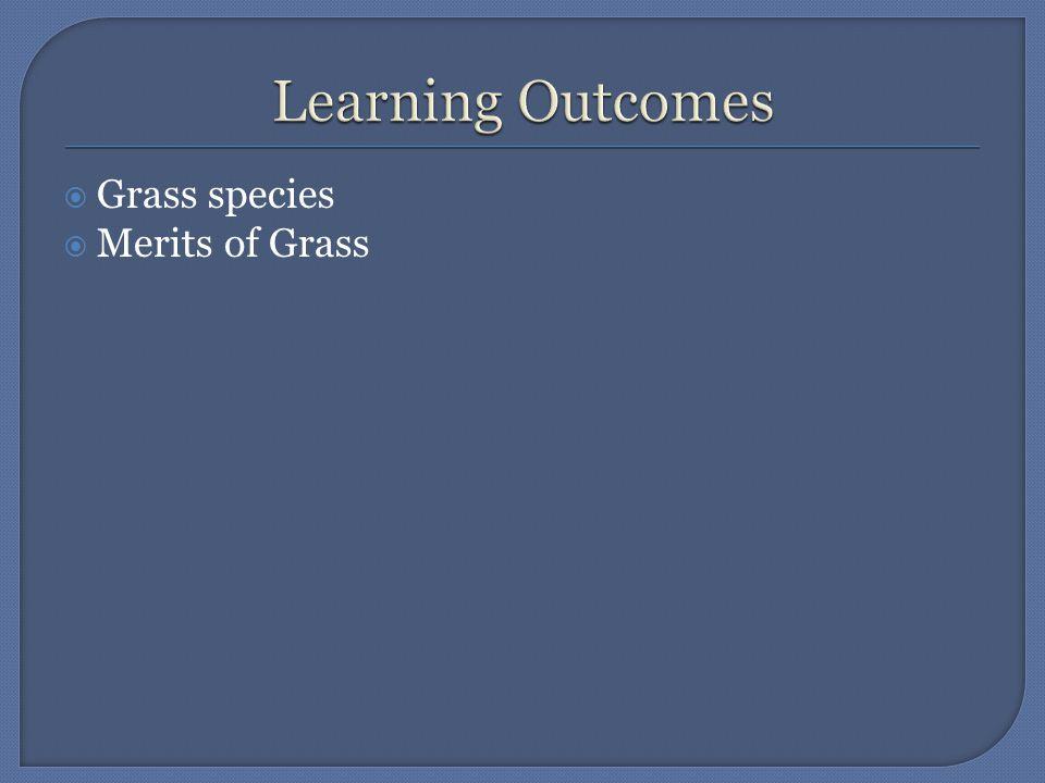  Grass species  Merits of Grass