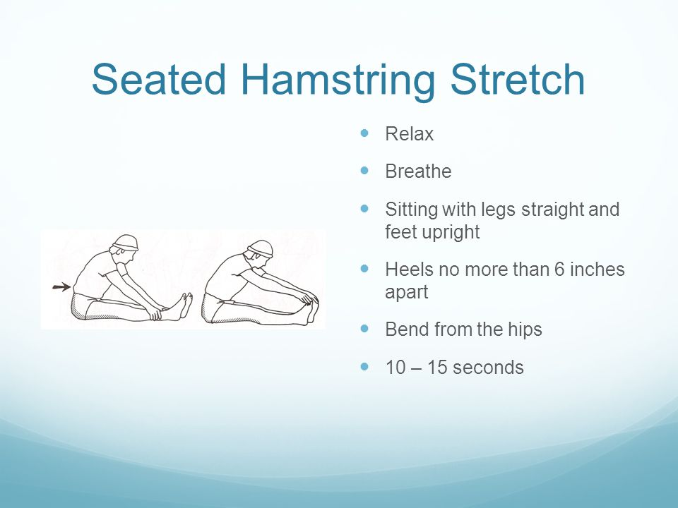 Seated Hamstring Stretch Relax Breathe Sitting with legs straight and feet upright Heels no more than 6 inches apart Bend from the hips 10 – 15 seconds
