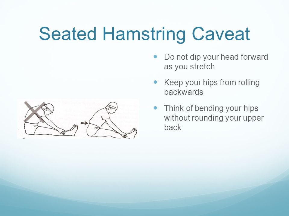 Seated Hamstring Caveat Do not dip your head forward as you stretch Keep your hips from rolling backwards Think of bending your hips without rounding your upper back