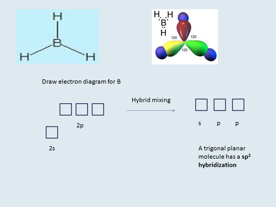 Draw electron diagram for B Hybrid mixing 2s 2p spp A trigonal planar molecule has a sp 2 hybridization