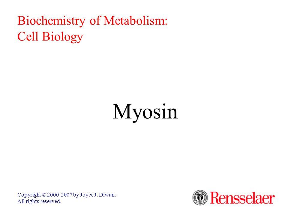 Myosin Copyright © 2000-2007 by Joyce J. Diwan. All rights reserved. Biochemistry of Metabolism: Cell Biology