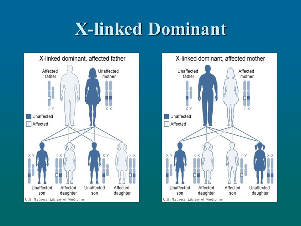 X-linked Dominant