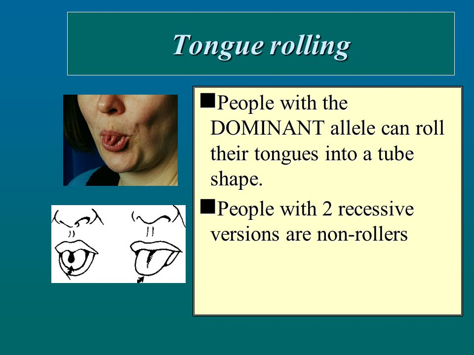 Tongue rolling People with the DOMINANT allele can roll their tongues into a tube shape.