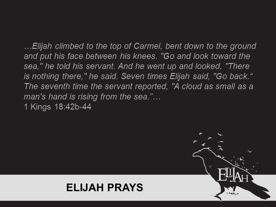 …Elijah climbed to the top of Carmel, bent down to the ground and put his face between his knees.