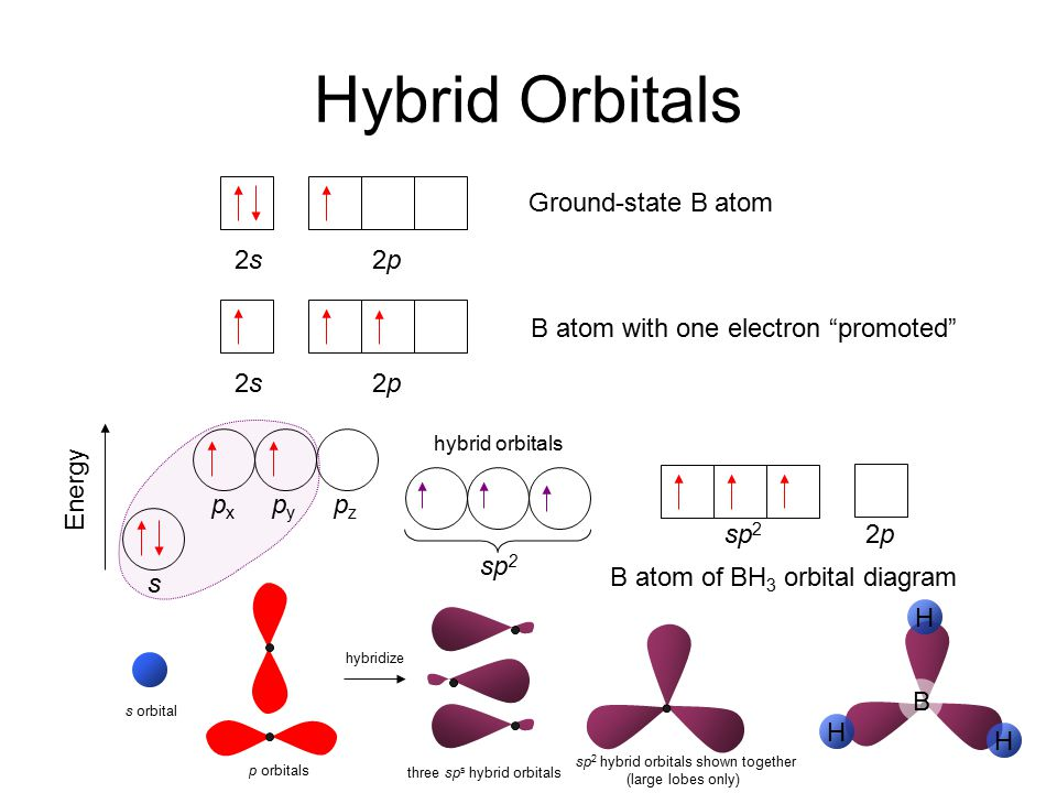 Hybrid Orbitals 2s2s2p2p Ground-state B atom s pxpx pypy pzpz Energy sp 2 2p2p B atom of BH 3 orbital diagram hybridize s orbital 2s2s2p2p B atom with