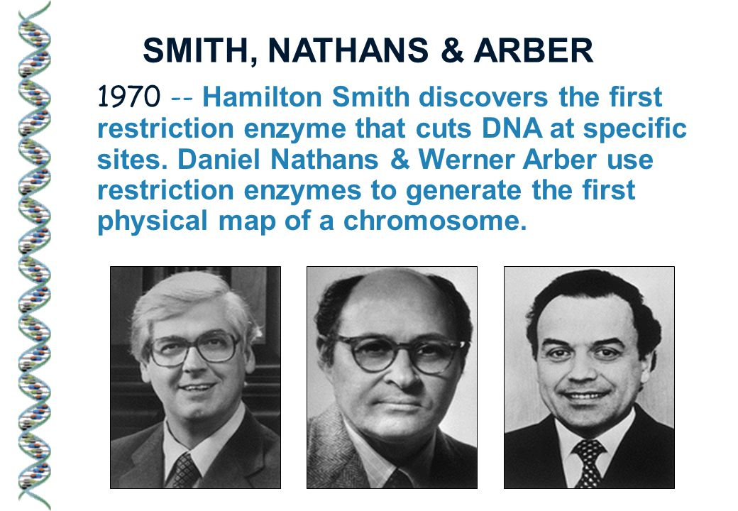1970 -- Hamilton Smith discovers the first restriction enzyme that cuts DNA at specific sites.