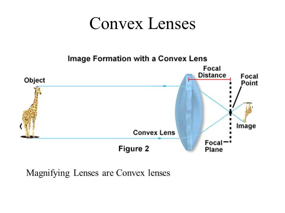Convex Lenses Magnifying Lenses are Convex lenses