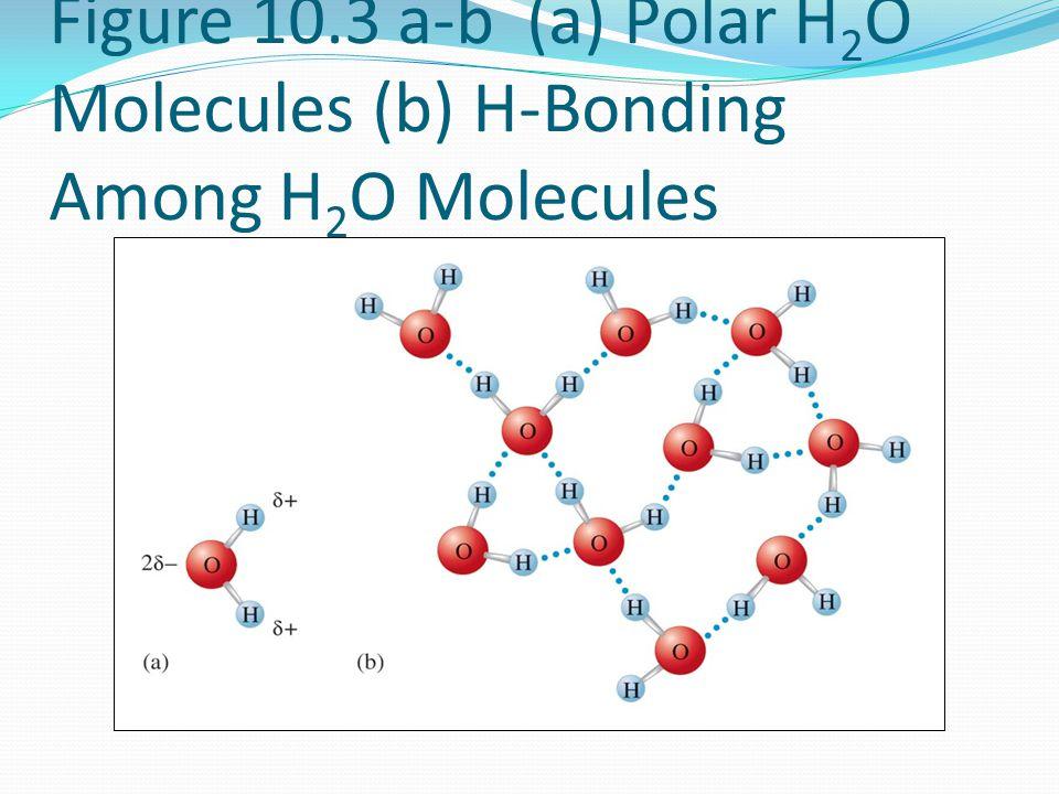Figure 10.3 a-b (a) Polar H 2 O Molecules (b) H-Bonding Among H 2 O Molecules