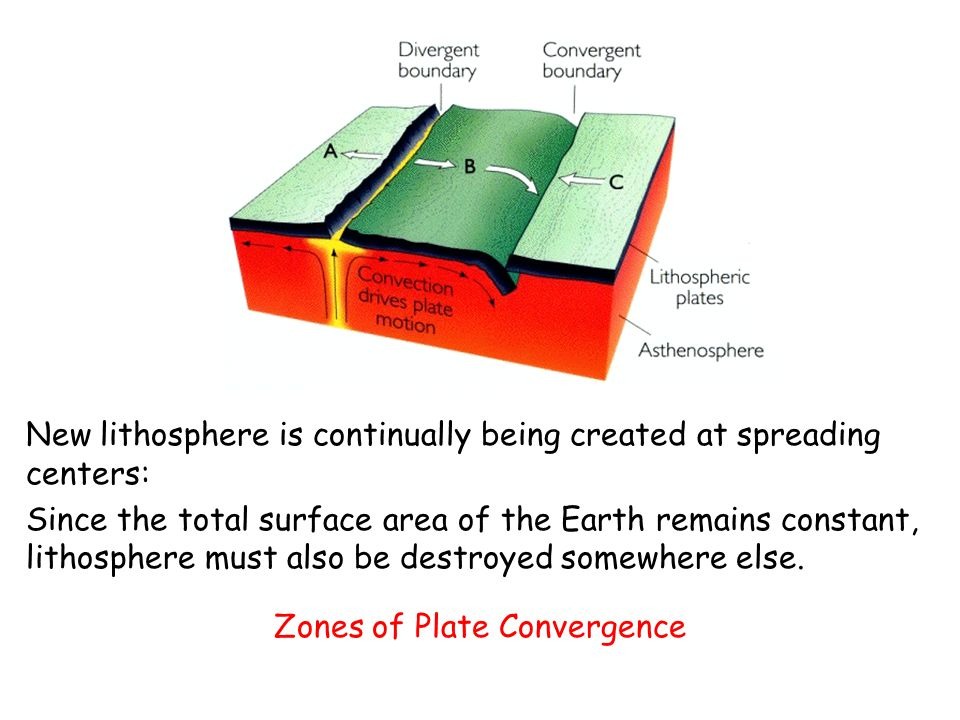 When two plates collide, the leading edge of one is bent downward, allowing it to descend beneath the other plate.