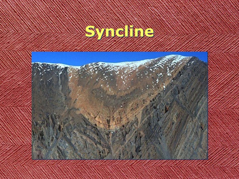 Anticline