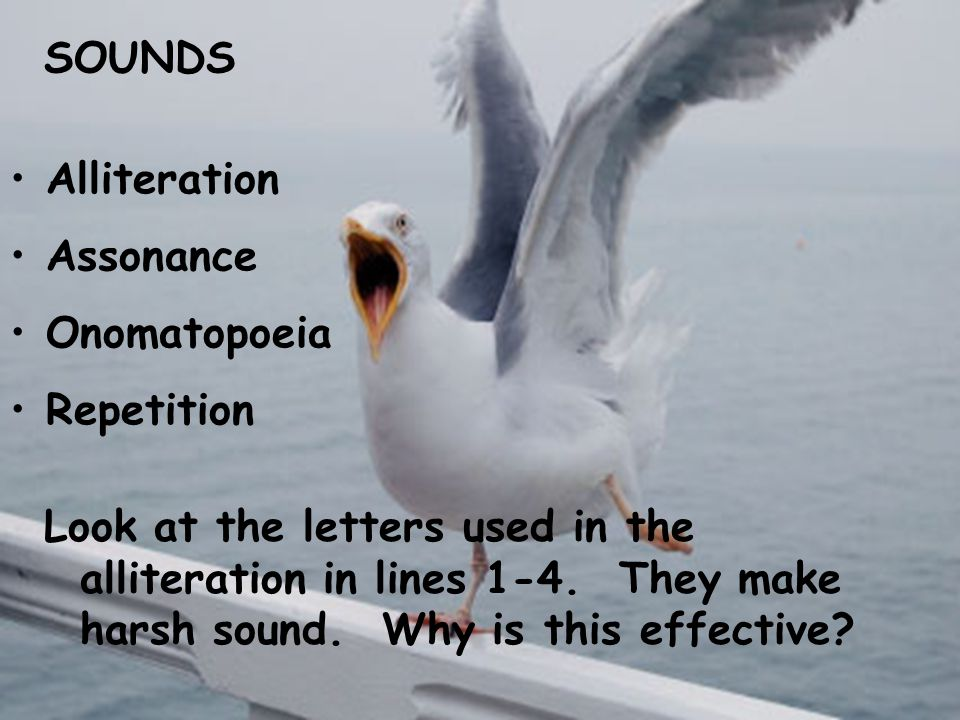 SOUNDS Alliteration Assonance Onomatopoeia Repetition Look at the letters used in the alliteration in lines 1-4. They make harsh sound. Why is this ef