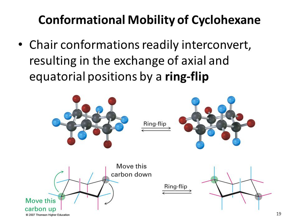 Conformational Mobility of Cyclohexane Chair conformations readily interconvert, resulting in the exchange of axial and equatorial positions by a ring-flip 19