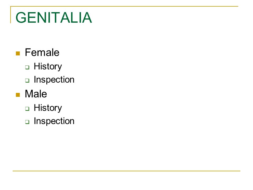 GENITALIA Female  History  Inspection Male  History  Inspection