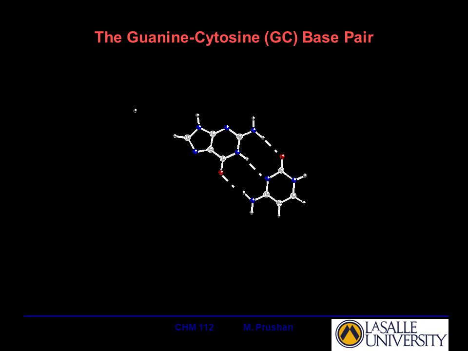 CHM 112 M. Prushan The Guanine-Cytosine (GC) Base Pair