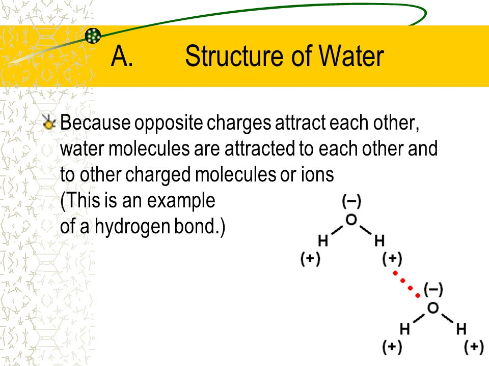 A.Structure of Water The oxygen nucleus exerts a greater pull on the electrons in the covalent bonds –Therefore, the oxygen atom has a partial negative charge –And the hydrogen atoms have partial positive charges