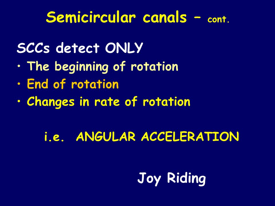 Semicircular canals – cont. SCCs detect ONLY The beginning of rotation End of rotation Changes in rate of rotation i.e. ANGULAR ACCELERATION Joy Ridin
