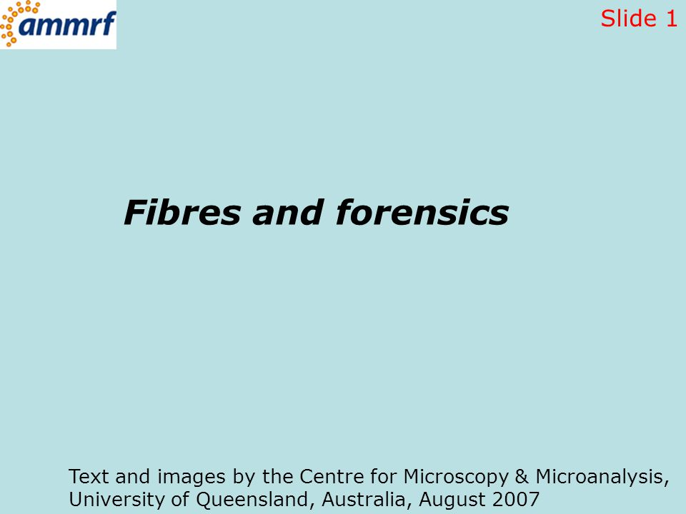 Fibres and forensics Text and images by the Centre for Microscopy & Microanalysis, University of Queensland, Australia, August 2007 Slide 1