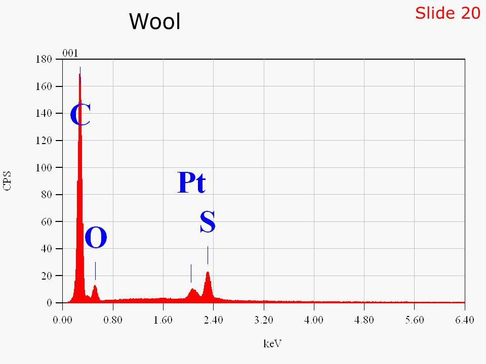 Wool Slide 20