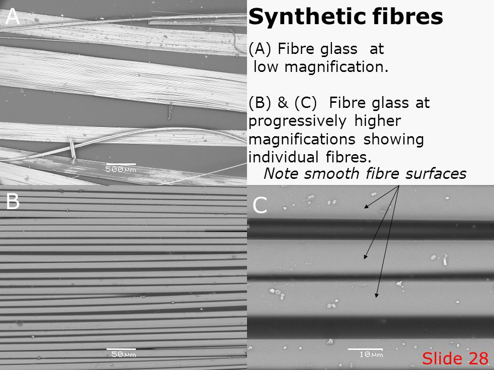 AB C Synthetic fibres (A) Fibre glass at low magnification.