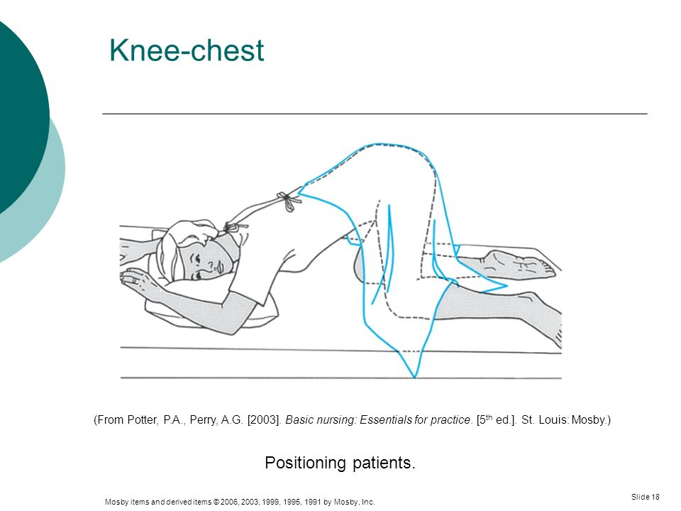 Mosby items and derived items © 2006, 2003, 1999, 1995, 1991 by Mosby, Inc. Slide 18 Knee-chest Positioning patients. (From Potter, P.A., Perry, A.G.