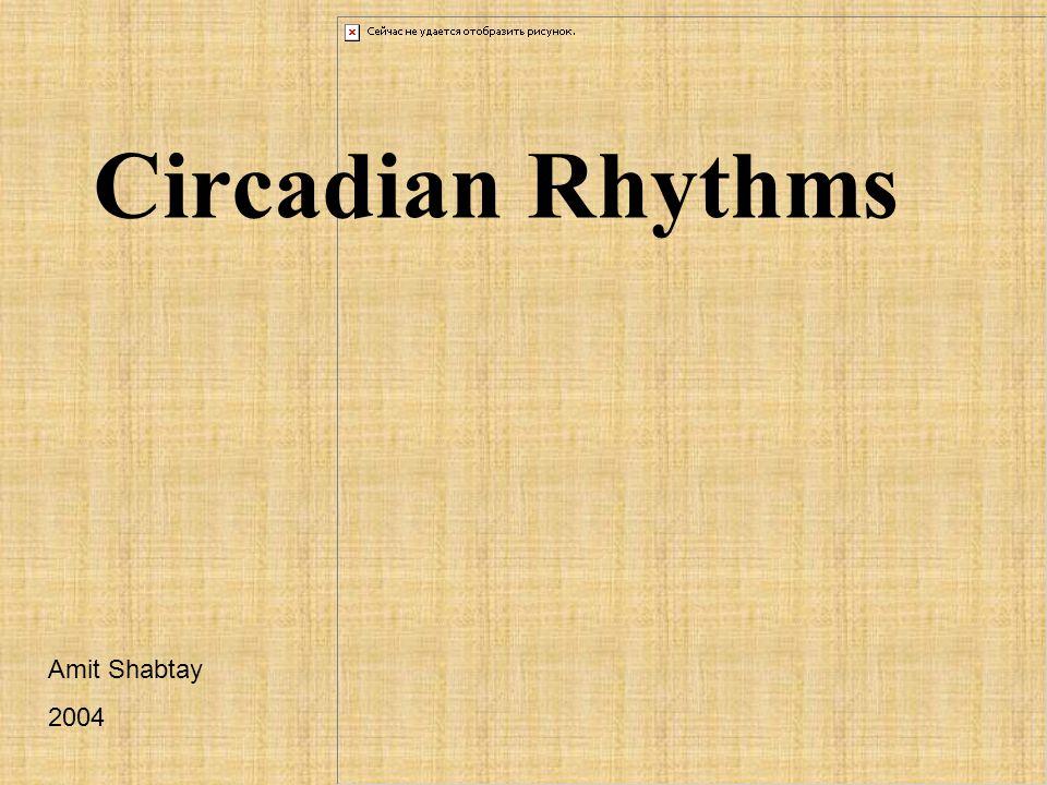 Circadian Rhythms Amit Shabtay 2004