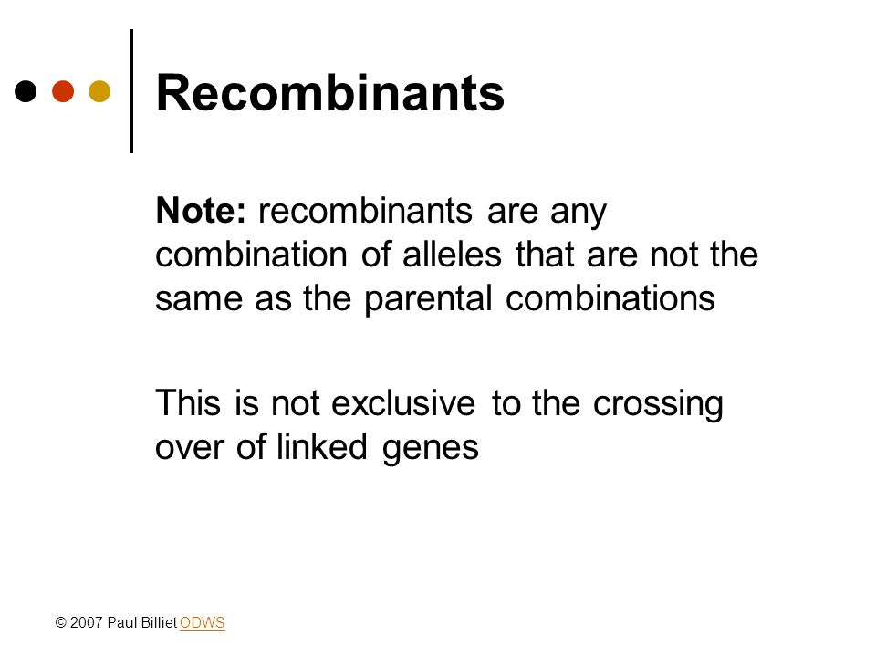 Recombinants Note: recombinants are any combination of alleles that are not the same as the parental combinations This is not exclusive to the crossing over of linked genes © 2007 Paul Billiet ODWSODWS