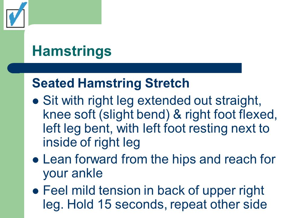 Hamstrings Seated Hamstring Stretch Sit with right leg extended out straight, knee soft (slight bend) & right foot flexed, left leg bent, with left fo
