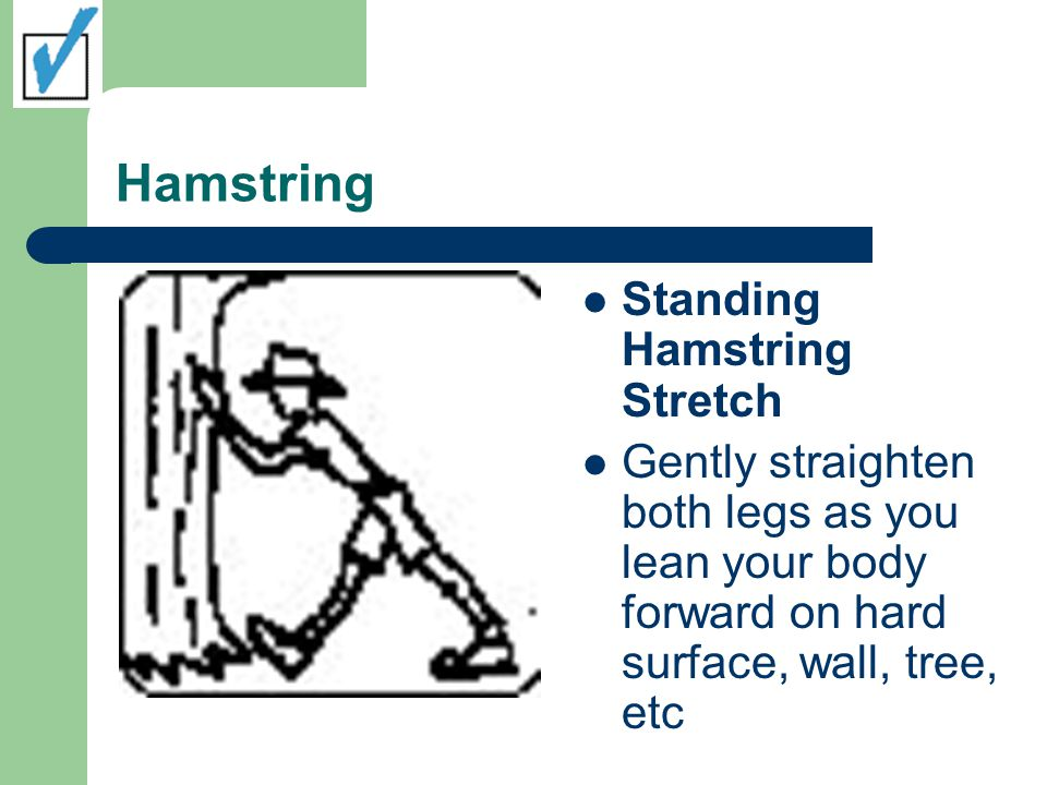 Hamstring Standing Hamstring Stretch Gently straighten both legs as you lean your body forward on hard surface, wall, tree, etc