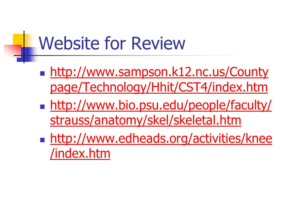 Website for Review http://www.sampson.k12.nc.us/County page/Technology/Hhit/CST4/index.htm http://www.sampson.k12.nc.us/County page/Technology/Hhit/CST4/index.htm http://www.bio.psu.edu/people/faculty/ strauss/anatomy/skel/skeletal.htm http://www.bio.psu.edu/people/faculty/ strauss/anatomy/skel/skeletal.htm http://www.edheads.org/activities/knee /index.htm http://www.edheads.org/activities/knee /index.htm