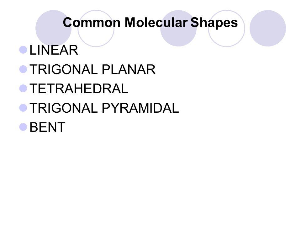 Common Molecular Shapes LINEAR TRIGONAL PLANAR TETRAHEDRAL TRIGONAL PYRAMIDAL BENT