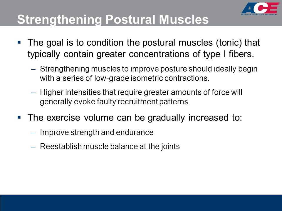 Strengthening Postural Muscles  The goal is to condition the postural muscles (tonic) that typically contain greater concentrations of type I fibers.