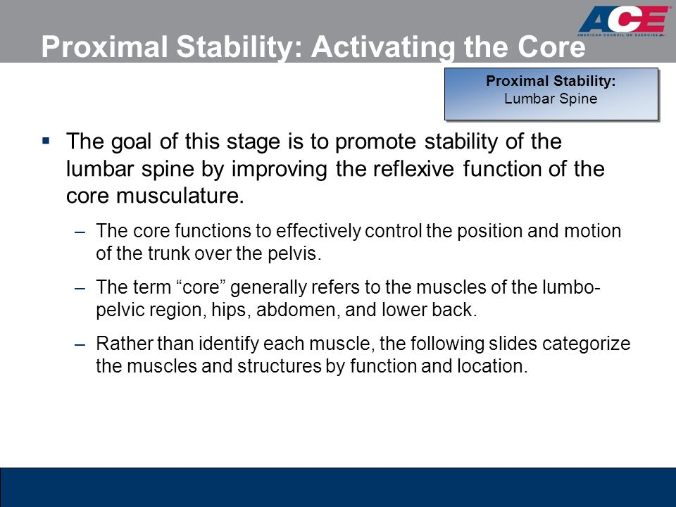 Proximal Stability: Activating the Core  The goal of this stage is to promote stability of the lumbar spine by improving the reflexive function of th