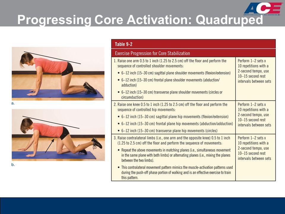 Progressing Core Activation: Quadruped