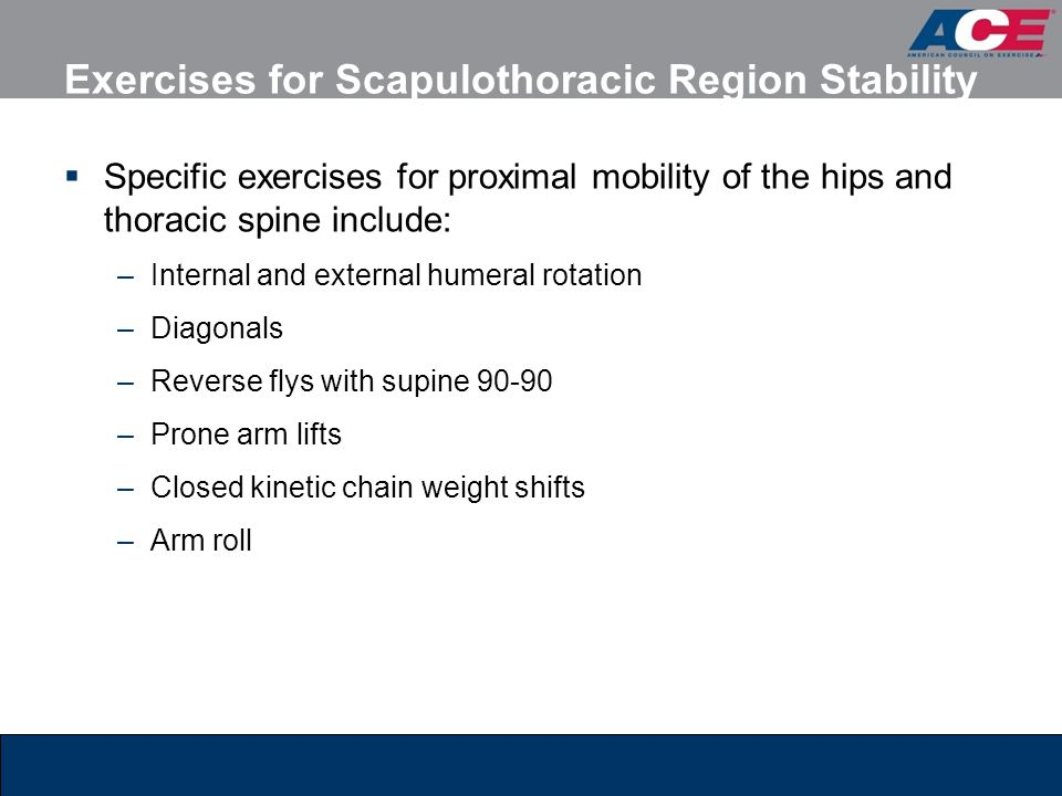  Specific exercises for proximal mobility of the hips and thoracic spine include: –Internal and external humeral rotation –Diagonals –Reverse flys wi