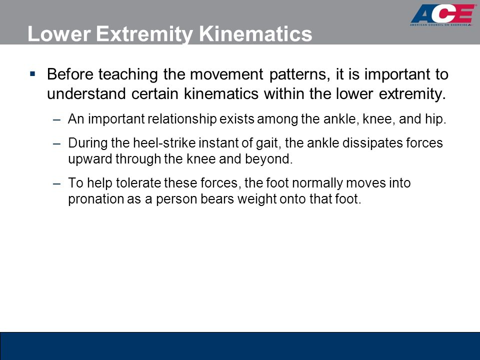Lower Extremity Kinematics  Before teaching the movement patterns, it is important to understand certain kinematics within the lower extremity. –An i