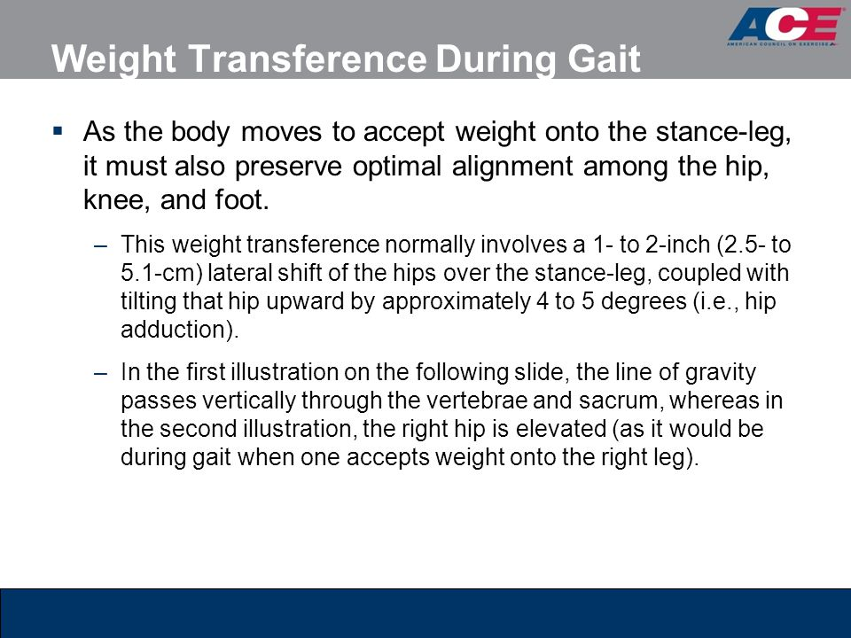 Weight Transference During Gait  As the body moves to accept weight onto the stance-leg, it must also preserve optimal alignment among the hip, knee,