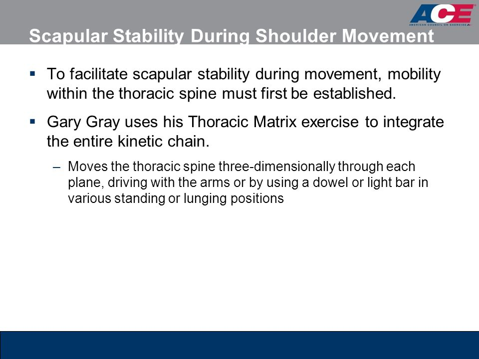 Scapular Stability During Shoulder Movement  To facilitate scapular stability during movement, mobility within the thoracic spine must first be estab