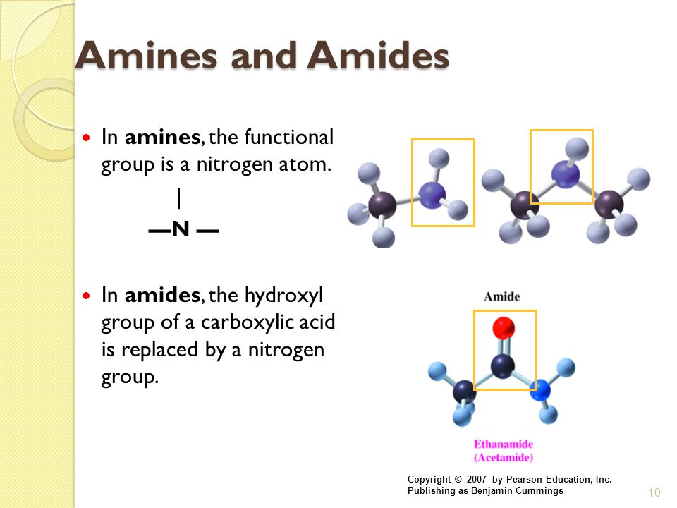 10 Amines and Amides In amines, the functional group is a nitrogen atom. | —N — In amides, the hydroxyl group of a carboxylic acid is replaced by a ni