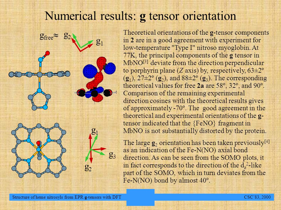 14 Structure of heme nitrosyls from EPR g-tensors with DFT CSC'83, 2000 Conclusions and outlookConclusions and outlook Numerical results: g-tensor orientationsNumerical results: g-tensor orientations Numerical results: g tensor orientation g3g3 g1g1 g2g2 g2g2 g1g1 g free  Theoretical orientations of the g-tensor components in 2 are in a good agreement with experiment for low-temperature Type I nitroso myoglobin.