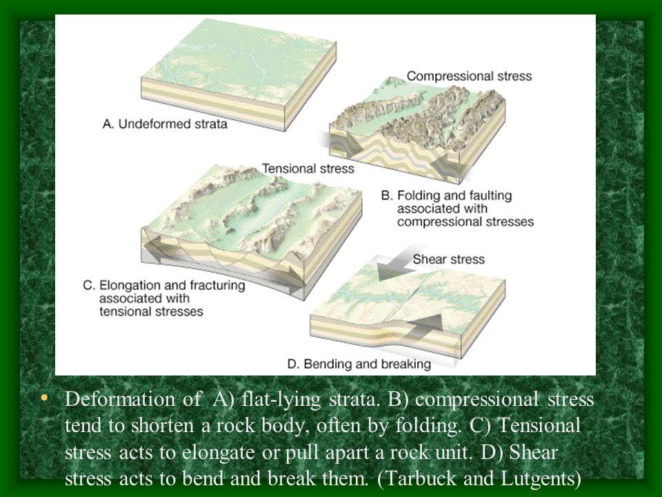 Folds of deformed sedimentary strata near Palmdale, California.