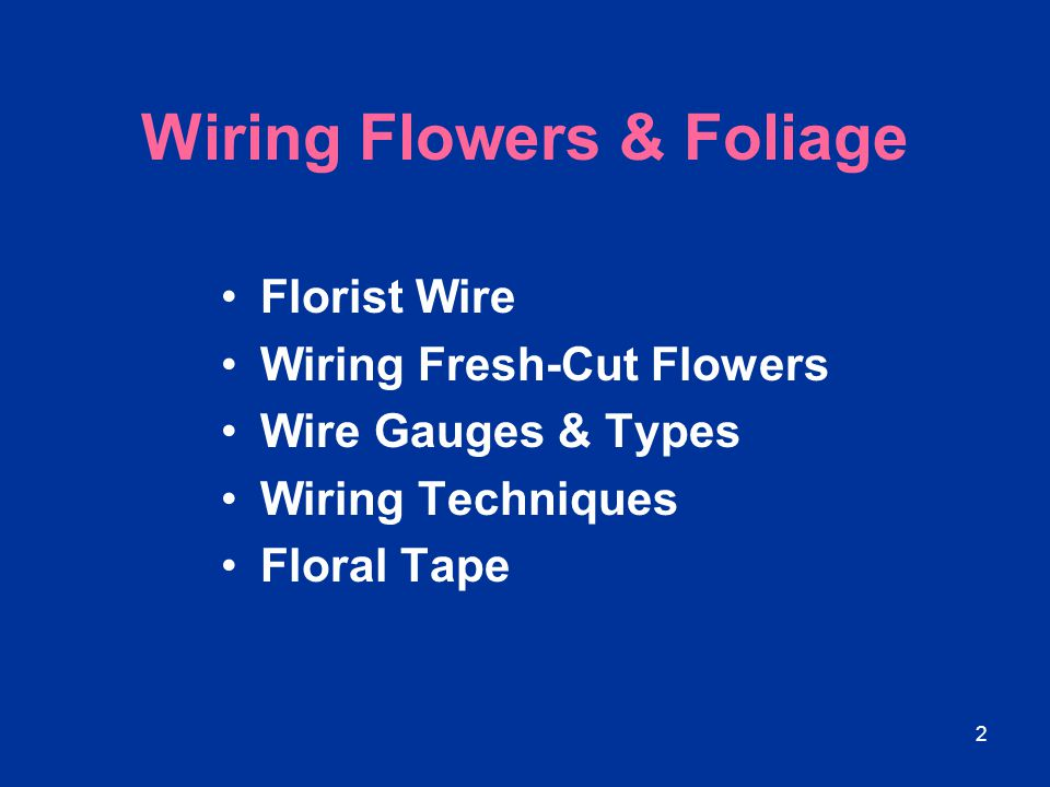 23 Wiring Techniques In corsage work, wire laid parallel to the stem creates less bulk and reduces design time.