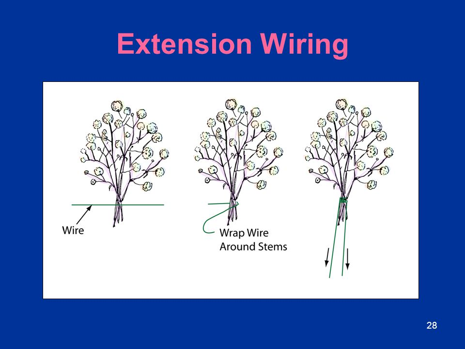 28 Extension Wiring