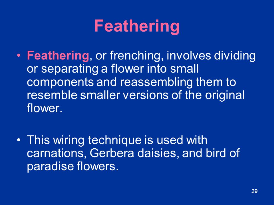 29 Feathering Feathering, or frenching, involves dividing or separating a flower into small components and reassembling them to resemble smaller versi