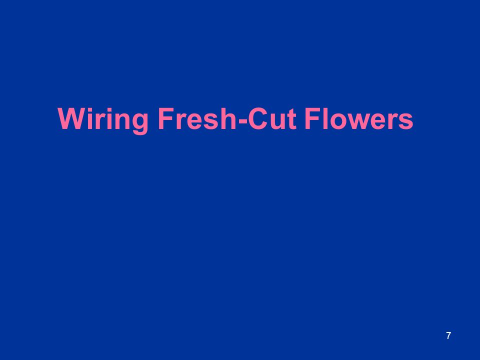 8 Wiring: Advantages Florist wire may be used to: Protect brittle stems in transport.
