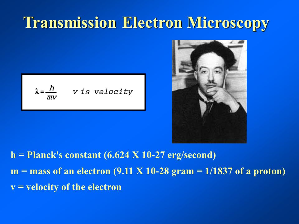 Transmission Electron Microscopy h = Planck s constant (6.624 X 10-27 erg/second) m = mass of an electron (9.11 X 10-28 gram = 1/1837 of a proton) v = velocity of the electron