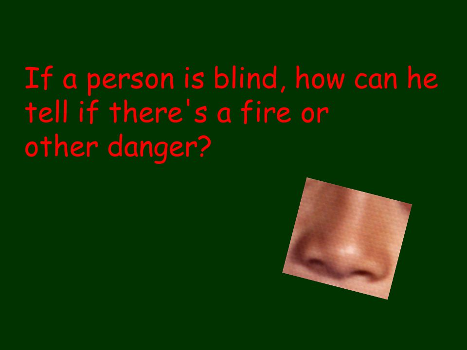 If a person is blind, how can he tell if there's a fire or other danger? How does the sense of touch help us learn about the world we live in? How can