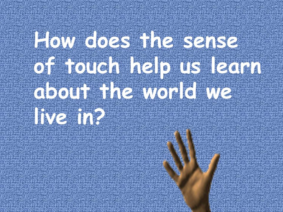 How does the sense of touch help us learn about the world we live in? How can you tell if one thing is bigger than another if you can't see it? What e